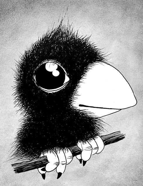 oiseau NB